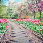 Záhradné centrum Ružomberok - Realizácie záhrad na kľúč