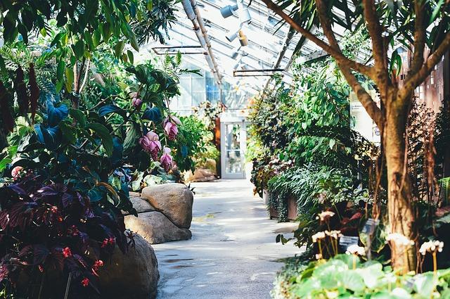 Záhradné centrum Ružomberok - Výsadba interiérovej zelene