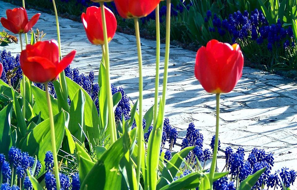 Záhradné centrum Ružomberok - Záhradné chodníky