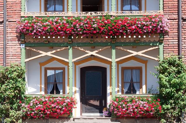 Záhradné centrum Ružomberok - Pestovanie a predaj balkónových rastlín